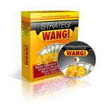 DVD Strategi Wang